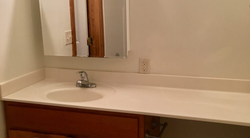 bathroom_2_1001_oakcrest_street_j-and-j-apartments