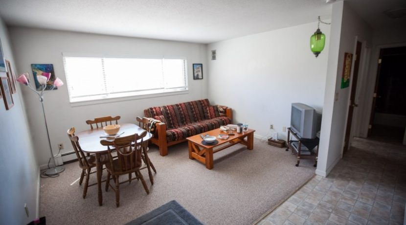 living-rm_902-20th-avenue-place_coralville_j-and-j-apartments