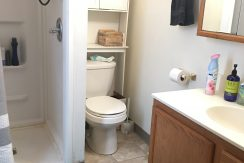 bathroom_114-wright-3_iowa-city_j-and-j-apartments